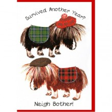 Scottish birthday card - Survived another year? Neigh bother!